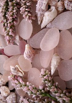 pink sea glass x lavender buds x little shells Dusty Pink, Dusty Rose, Pink Love, Pretty In Pink, Nude Pink, No Ordinary Girl, Tout Rose, Everything Pink, Home And Deco
