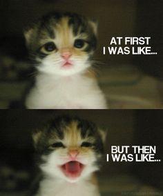 Silly people try to ruin my life, but then I am like - KARMA KARMA KARMA