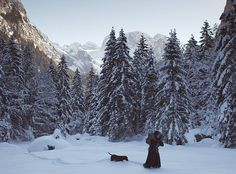 """""""Die Wand"""": Isolation im Alpenidyll That's Entertainment, Wands, Entertaining, Mountains, Nature, Movies, Travel, Outdoor, Movie"""