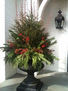 christmas-container-5thstate.jpg 480×640 pixels