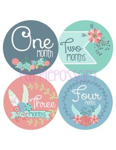 Baby Month Stickers Monthly Baby Milestone by PurplepossomLabels