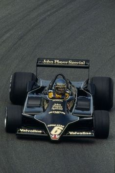 Ronnie Peterson Lotus79 in 1978