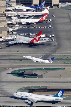 Typical day at LAX. Go the Aussie A380  A330! everywhere Promtion-Joy Richard Preuss