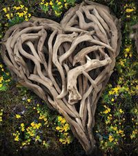 Driftwood Heart - start looking for the wood!!!