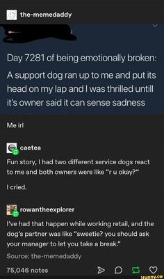 Tap to see the meme Tumblr Funny, Funny Memes, Jokes, A Silent Voice, Faith In Humanity Restored, Lol, My Guy, In This World, Shit Happens