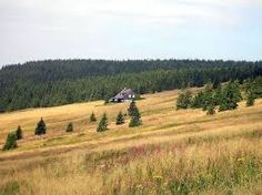 příroda - Krkonoše