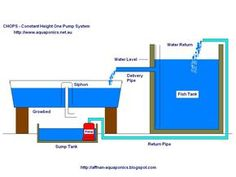 aquaponics plans for free | Building an Aquaponics System: The Planning Phase