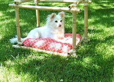 Sew DoggyStyle: DIY Dog Bed - Bamboo Frame!!!!!
