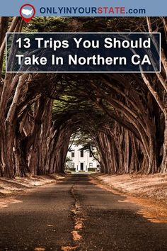 Travel | California | Northern California | NorCal | Day Trips | Amazing Places | Bucket List