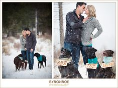 dogs in engagement photos - Google Search