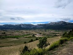 La Rioja Alavesa en primavera