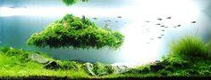 Amazing!! AGA-Aquascaping-Contest-2009-Extra-Large-Tank-5.jpg; 550 x 211 (@100%)