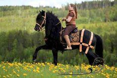 Authentic BTJ Medieval Saddle Breeching / Barding