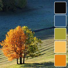 Палитры, вдохновленные осенью