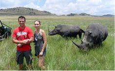 BIZARRO - TURISTA NA AFRIKA marcando bobeira na reta dos rinocerontes filhotes  - a sorte que a mãe ou o pai estavam longe