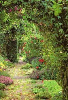 緑のトンネル。ひみつの花園・シークレットガーデン!