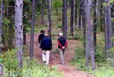Blind Bay, BC popular #fishing, #canoeing, hiking & wilderness camping