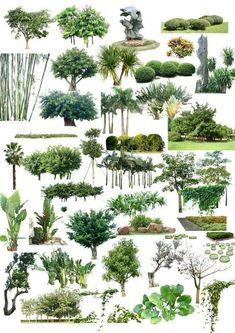 PSD for ArchViz | CG Persia #urbanlandscapearchitecture Plant Drawing, Landscape Architecture Model, Landscape Model, Architecture Graphics, Architecture Details, Landscape Design, Garden Design, Tree Photoshop, Photoshop Brushes
