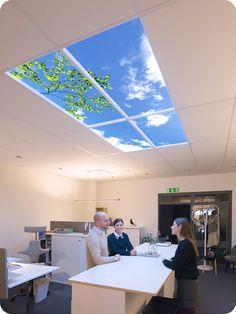 Wyposażenie firmy w sufitowy lumlyx ożywia przestrzeń, pobudza kreatywność i wprowadza nastrój do pomieszczeń bez okien. Idealna iluzja natury.