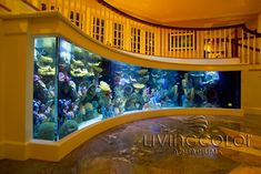 We create large custom residential aquariums for the most enthusiastic lovers of fish tanks. Our residential aquariums are available ready made or custom fit to any space in the home.