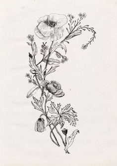 WILDFLOWERS Art Print by nadezdafavaillustration – floral tattoo sleeve Botanisches Tattoo, Tattoo Bein, Sternum Tattoo, Tatoo Art, Tattoo Drawings, Tatoo Floral, Floral Tattoo Design, Tattoo Designs, Vintage Floral Tattoos