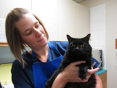 Here's sweet Lulu with Nancy. Lulu is with us for grooming today (Sept. 2012).