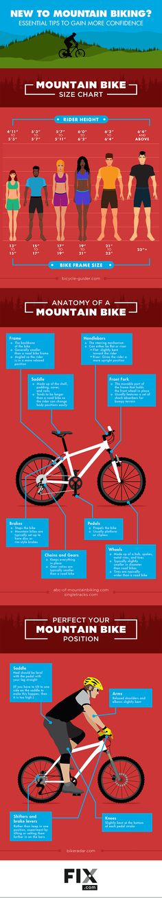 Read our tips for gaining confidence while mountain biking! We cover posture…