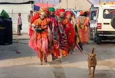 India Kumbh Mela, Religion, India, Goa India, Indie, Indian