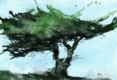 Paul Bailey - Contemporary Artist - Landscapes - Windswept