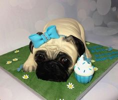 Pug birthday cake - cake by Dragons and Daffodils Cakes Pug Birthday Cake, 55th Birthday, Torta Candy, Daffodil Cake, Pink Velvet Cupcakes, Pug Cake, Extreme Cakes, Animal Cupcakes, Puppy Party