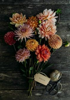 garden photography rustic dahlias - flower photography tips and ideas from photographer Eva Nemeth including expert tips on how to create depth of field, work with light, texture, aperture and f stops to take beautiful flower and garden photographs Dahlia Bouquet, Dahlia Flower, Orchid Flowers, Cut Flowers, Pretty Flowers, Drawing Flowers, Beautiful Flowers Pictures, Paper Flowers, Photography Tips
