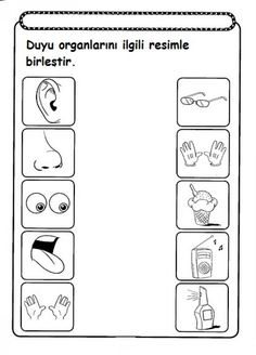 five senses worksheet for kids (1)