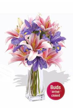 Missy    You just can't help smiling when you see this awe inspiring bouquet of pink Oriental lilies and purple Iris. Send this pink and purple sensation to someone and see the incredible change it can bring about.