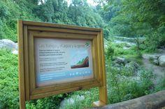 Cartel ciclo del agua en las Yungas para Parque Los Sosa · Tucuman · Argentina · Sign - park · Cecilia Estrella Design