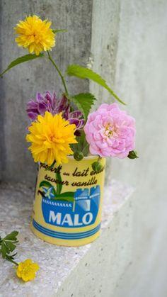Flowers in a paper yogurt basket