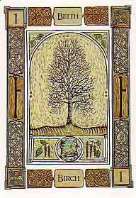 Birch. The white indicates cleanliness and determination in overcoming difficulties.      It is time for a new start. Before this can be safely embarked upon, however, all old ideas, unhelpful influences and bad thoughts need to be cast aside.