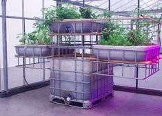 Picture taken at Mediamatic Fabriek. This is the horizontal aquaponics installation. The vertical one features the plant containers aligned vertically. This…