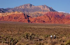 Red Rock Canyon, Nevada. I will go here on my trip to Vegas.