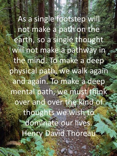 Making a path . . .