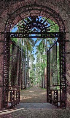 Jardim botanico - Rio De Janeiro, Brazil
