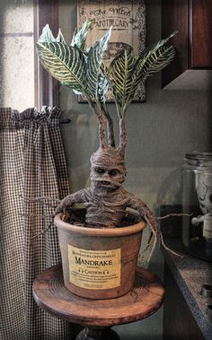 , Let's make a Harry Potter Mandrake Halloween Forum member Hilda's mandrake. , Let's make a Harry Potter Mandrake Halloween Fo. Harry Potter Mandrake, Décoration Harry Potter, Harry Potter Thema, Harry Potter Bedroom, Harry Potter Birthday, Harry Potter Plants, Harry Potter Gadget, Harry Potter Crafts Diy, Harry Potter Display