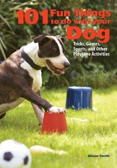 101 Fun Things To Do With Your Dog: Tricks, Games, Sports and Other Playtime Activities « DogSiteWorld-Store