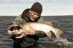 Jeremy sostiene un Muskallonga Americano, o Musky según como lo llaman los locales, en el lago del Águila en Canadá.