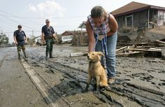Scenes of abandoned animals and the outcry to protect pets in disasters proved too hard to ignore.