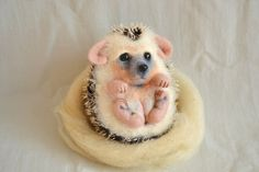 Hedgehog Kid.. I will make this item for your order by GladOArt, $125.00