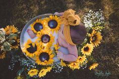 baby milk sunflower bath photoshoot - The world's most private search engine Baby Girl Photos, Cute Baby Pictures, Newborn Pictures, Country Baby Pictures, Monthly Baby Photos, Sunflower Party, Sunflower Baby Showers, Milk Bath Photography, Newborn Baby Photography