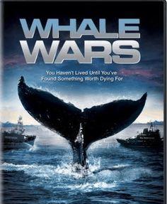 Whale Wars!!!