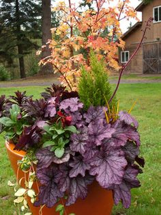 Fall Container Gardenfall Shades Are The Starting Point For A Thanksgiving Design That Can Easily Be