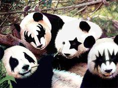 Kiss – Panda version | Yamanika