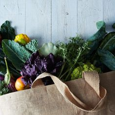 Essential Tools for Fighting Food Waste